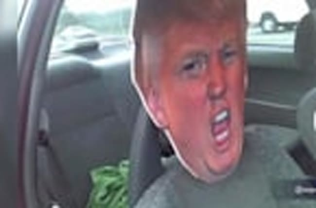 Cutout of Trump's Head Doesn't Qualify You For HOV Lane
