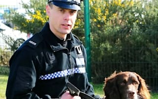 Police dog sniffs out stolen jewellery in surprising spot