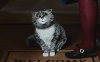 Sainsbury's Christmas advert features Mog the Cat