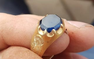 Treasure hunter finds medieval ring in Sherwood Forest