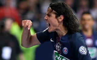 Cavani can replace Ibrahimovic - Al-Khelaifi