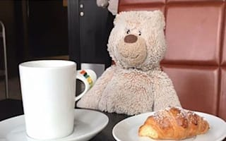 Hotel turns lost teddy bear into internet sensation