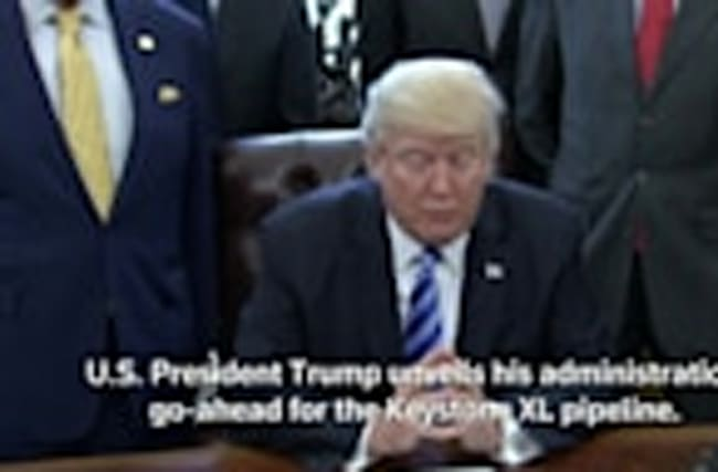 Trump greenlights Keystone XL pipeline
