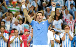Del Potro reveals broken finger