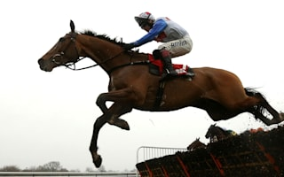 Reve De Sivola dies after collapsing at Kelso