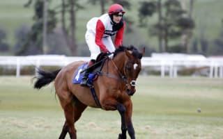 Pendleton to ride Pacha Du Polder at Cheltenham