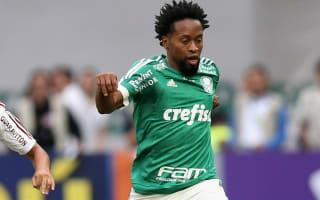 Copa Libertadors Review: Palmeiras held, Tachira triumph