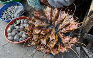 Would you eat a roasted rat skewer? It's a hit in Vietnam