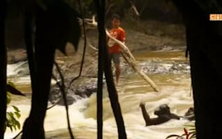 Drowning orangutan saved from river in Indonesia
