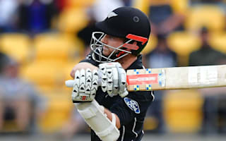 Williamson reflects on Kiwis' tough day at the office in Proteas battering