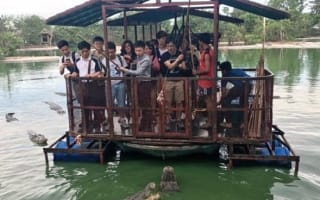 Crocodile feeding tourist attraction suspended in Thailand