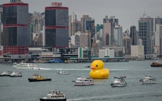 Peking duck! Giant inflatable art installation sails into Victoria Harbour