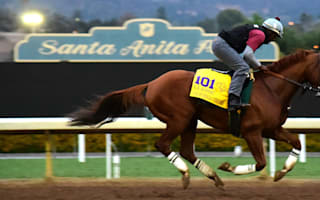 California Chrome primed for Breeders' Cup Classic win