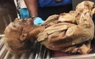 'Decaying corpse' put through airport security