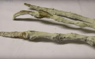 Aliens in Peru? Giant hand discovered near Cusco