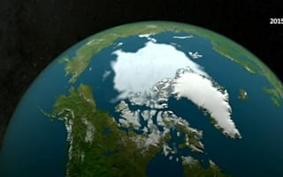 Arctic 'in crisis' as sea ice coverage falls to lowest winter level