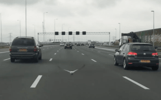 Pigeon caught on camera racing against cars