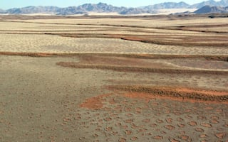 Has the secret behind Namibia's 'fairy circles' finally been revealed?