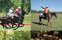 Argentina Polo Day - Private Trips