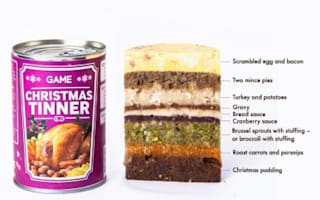 Christmas dinner...in a tin