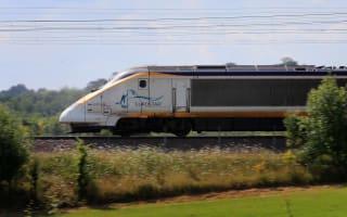 Eurostar delays after train hits wild boar