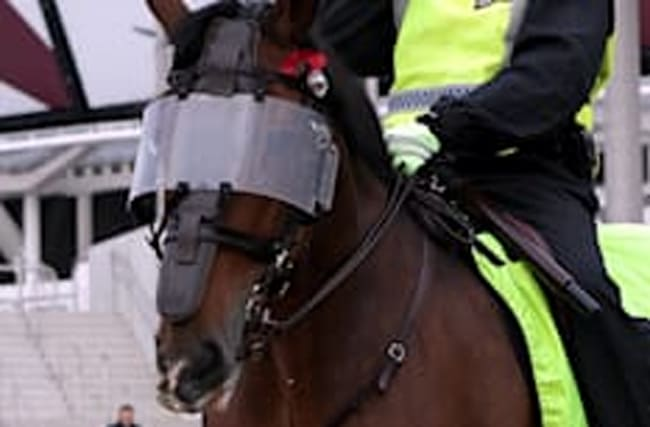 Celtic fan is arrested for throwing burger at police horse