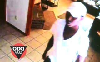 Thief interrupts burglary for toilet break