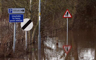 Nearly half of British drivers find road signs distracting