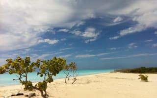 Caribbean islanders  object to Robert De Niro resort