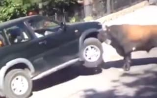 Head-butting bull attacks car with passengers inside