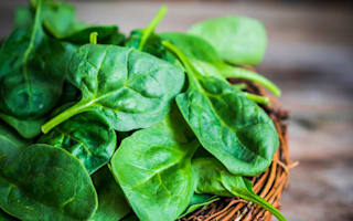 Supermarkets are running out of a spinach after rain damages crops
