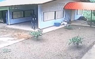 Dim-witted burglar breaks into doorless garage through window