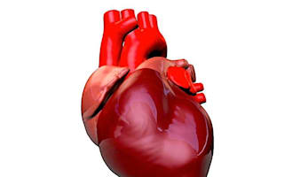 Five heart attack myths you need to know