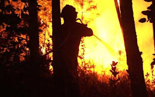 Dozens killed in Portugal forest fires