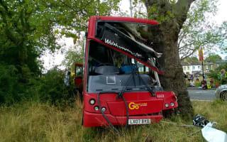 Twelve injured as bus hits tree in London