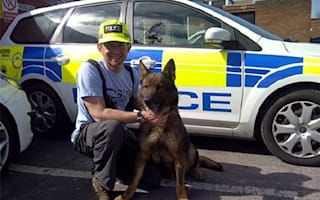 Police dog tracks suspect for two miles