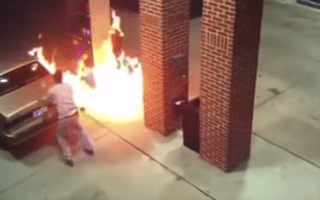 Driver tries to burn spider and sets fire to petrol station