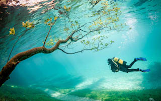 Beautiful photos: National Geographic Photo Contest winners 2014
