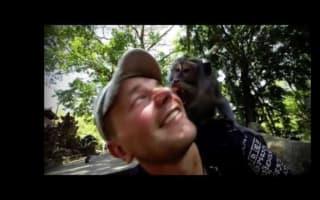 Monkey tries to bite tourist at wildlife sanctuary (video)