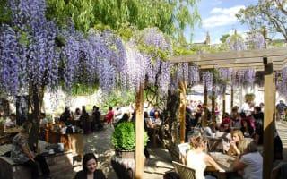 London's best pub gardens