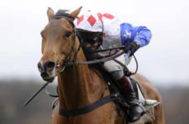 Popular jump horse Reve De Sivola collapses and dies