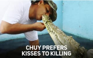 Forget dogs, this man's best friend is a crocodile