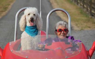 Dying 90-year-old saw out her days on an epic road trip