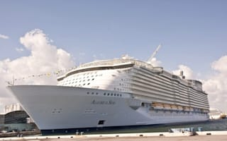 British man missing after falling off 'world's largest cruise ship'