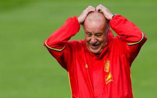 Del Bosque: No punishment for Pedro