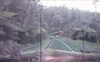 Trees collapse onto Australian highway just inches from motorists (video)