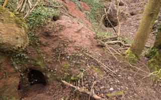 'Rabbit hole' leads to incredible set of 700-year-old caves