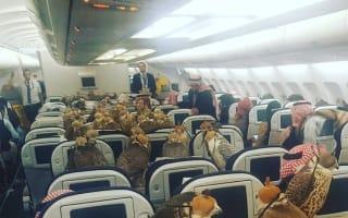 Saudi prince buys plane seats for 80 falcons