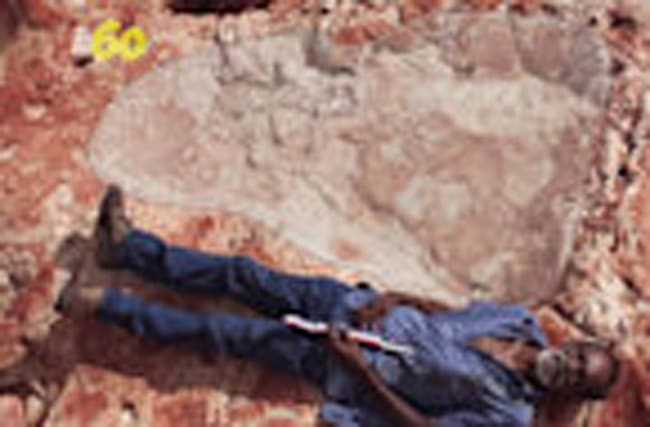 World's Biggest Dinosaur Footprint Found in Australia