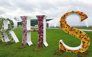 Chatsworth Flower Show opens to public for first time